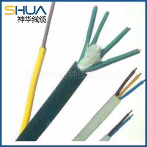 Fluorine plastic insulated and sheathed heat-resistant (control) cables